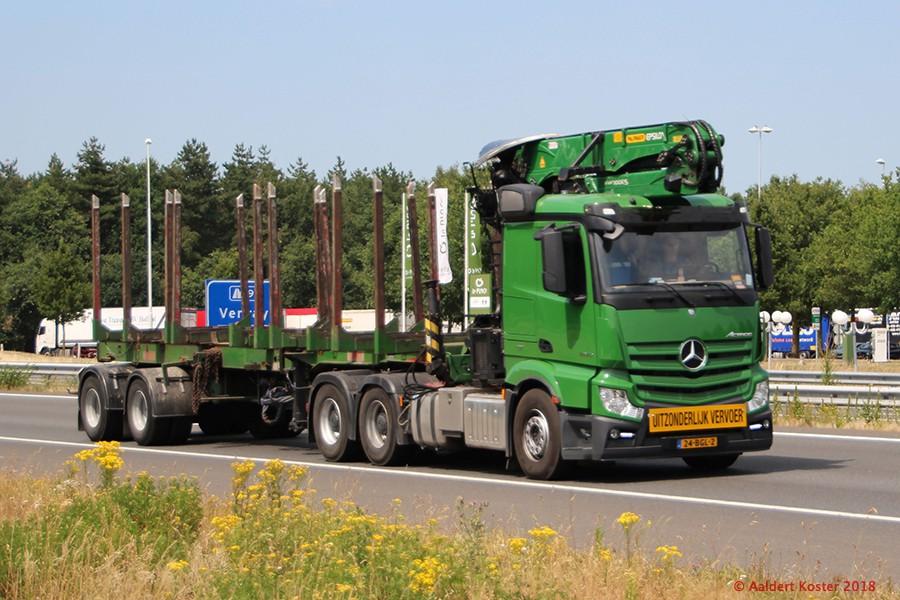 20210107-Holztransporter-00004.jpg