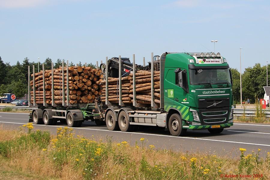 20210107-Holztransporter-00005.jpg