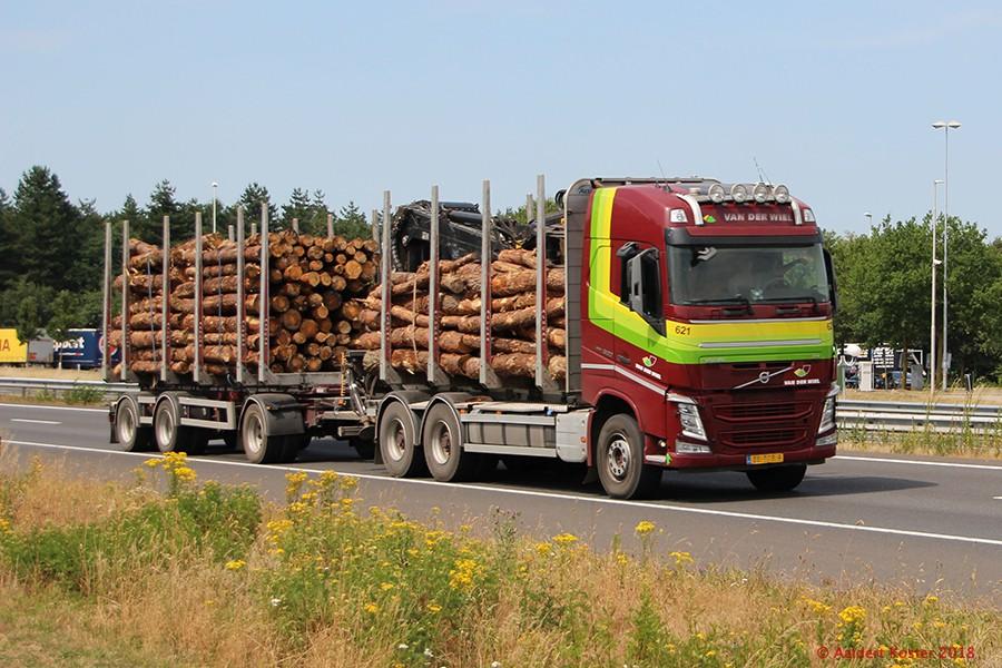20210107-Holztransporter-00006.jpg