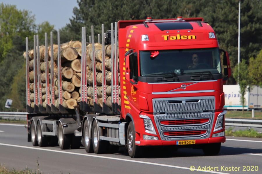 20210107-Holztransporter-00010.jpg