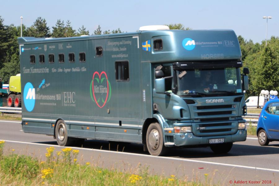 20210107-Pferdetransporter-00009.jpg
