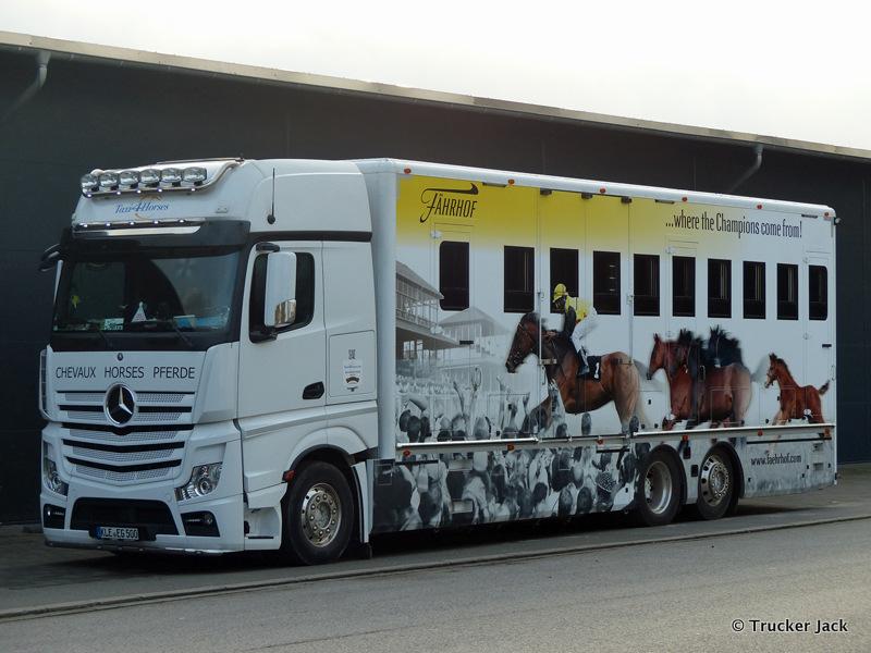 20210107-Pferdetransporter-00014.jpg